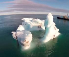 aviadron-arktika